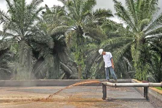 Warga Desa Mahato Minta PT Naga Mas Stop Membuang sampah ke Sungai Setalas