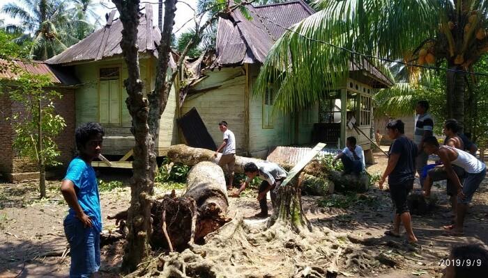 rumah-tertimpa-pohon-tumbang.jpg