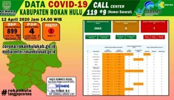 COVID-19 di Rohul : Jubir Tim Gugus Tugas Akui PDP Bertambah 1 dan 4 Sudah Dipulangkan
