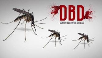 UPTD Puskesmas Rambah Catat 43 Penderita DBD